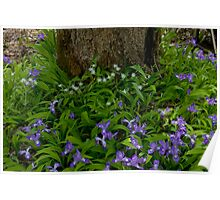 Woodland Bouquet   Poster