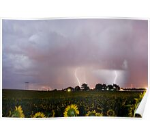 Sunflower Field Thunderstorm Poster