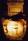Medusa, Basilica Cistern, Istanbul by John Douglas