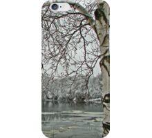 Russian Birch  iPhone Case/Skin