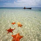 Paradise in Panama by Alex  Bramwell