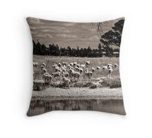 Sheep may safely graze. Throw Pillow