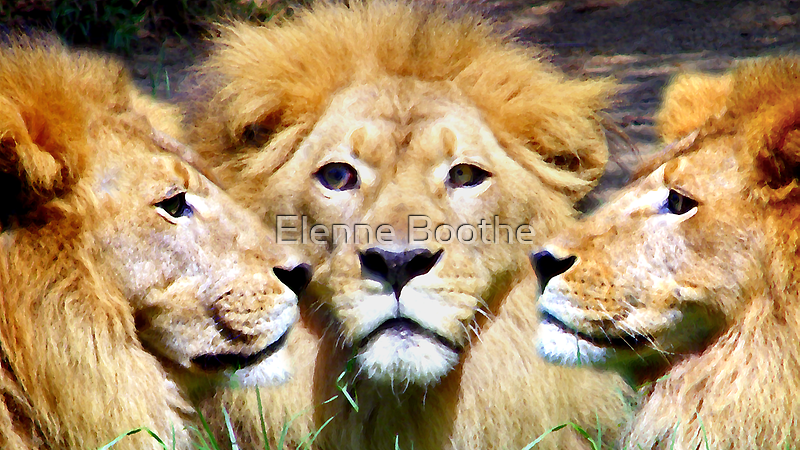 The Battle by Elenne Boothe