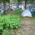Tents by Mishimoto