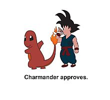 Charmander Approves Photographic Print