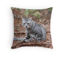 why are you staring at me Throw Pillow