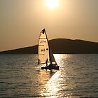 Sailing in the Sun by Michelle Welch