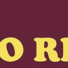 The Doors - Mr. Mojo Risin' by Brian Mazzarella