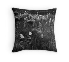 Backlit Reeds, Tidal river, Wilsons Promontory Throw Pillow