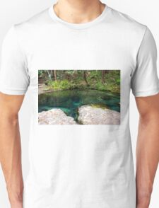 A Clear View, Rock Springs T-Shirt