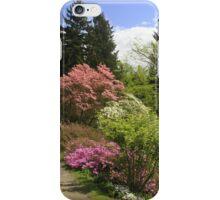 Walking through a dreamworld of colours iPhone Case/Skin