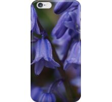 A gathering of bluebells iPhone Case/Skin