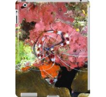 Banded Coral Shrimp on Colorful Coral iPad Case/Skin