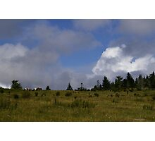 Grayson Highlands Photographic Print