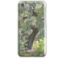 Garden View iPhone Case/Skin