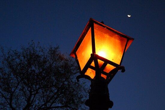 Albert Park Lamp at Dusk by AusDisciple