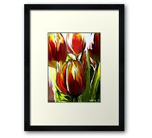Tulip Brush Framed Print