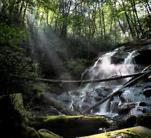 Sunbeam Falls by Kevin Means
