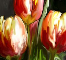 Red & Yellow Tulips by cschuh