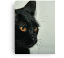 Bill Canvas Print