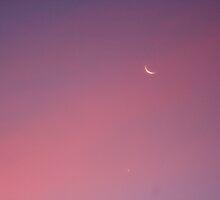 Deep Pink Moon by starlitewonder