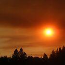Fire In Yuba County by NancyC