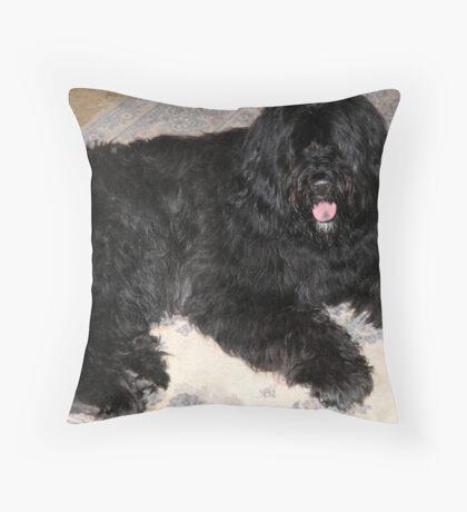 At Ease Throw Pillow