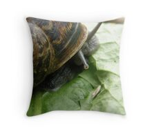 Slimy Snail Throw Pillow