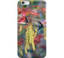 Willow Oak iPhone Case/Skin