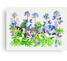 Colorful Weed Canvas Print