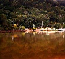 Wiseman Ferry by James Deypalan