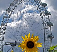 London Eye Sunflower  by Karen Martin
