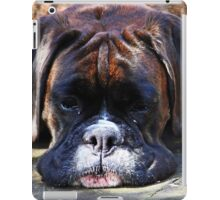 Such is Life -Boxer Dogs Series- iPad Case/Skin
