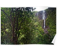 Wairere Falls. Poster