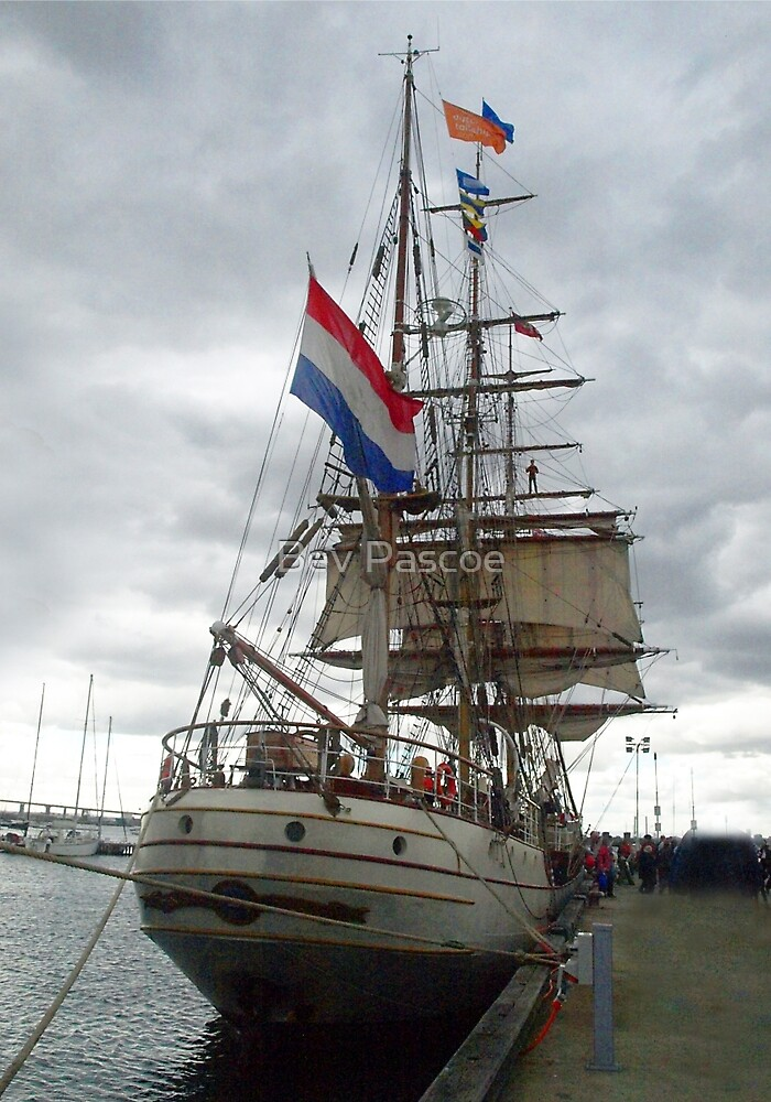 Dutch Tall Ship 'Bark-Europa' at Williamstown  by Bev Pascoe