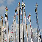 Nepal Prayer Flags by Brooke Findlay