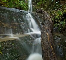 Forgotten Waterfalls. by Michael Treloar