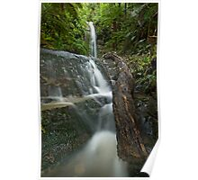 Forgotten Waterfalls. Poster