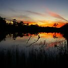 Stunning Sunset 2 by Michael Humphrys