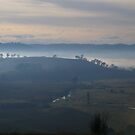 Misty Dawn by Michael Humphrys