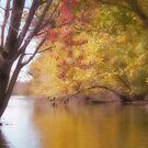 River Tranquility by enchantedImages