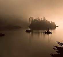 Morning Mist by David Friederich