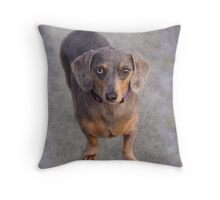 Velvet Snausage Throw Pillow