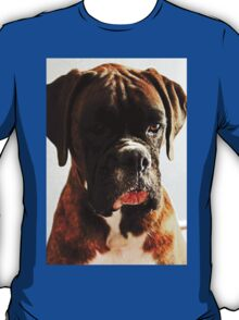 I'm sorry... won't do it again  -Boxer Dogs Series- T-Shirt