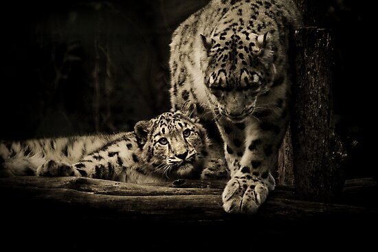 Mother & Son by Natalie Manuel