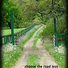 Choose the road less traveled by Myillusions