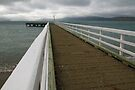 Seatoun Jetty by Werner Padarin