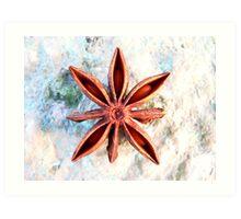 Star for Jo Art Print
