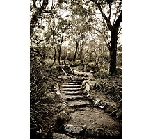 Just a few more steps ... Photographic Print