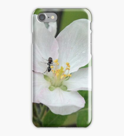 Pollinator iPhone Case/Skin